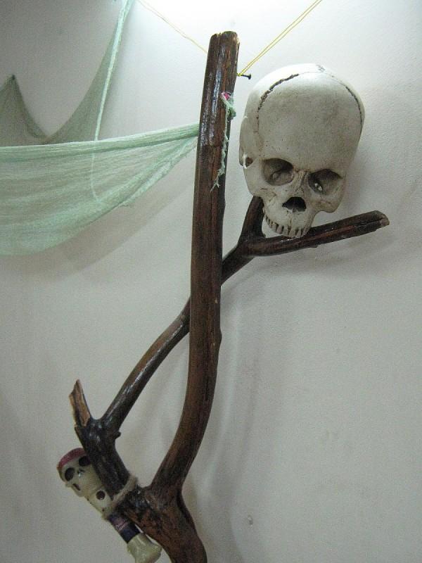 Череп на ветке в Комнате страха © Алёна Груя