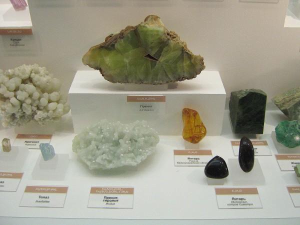 Камни, представленные на выставке в Музее природы © Алёна Груя