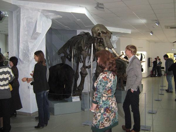 Посетители в палеонтологическом зале музея © Алёна Груя
