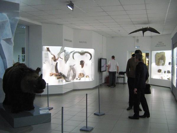 Зал, в котором расположена выставка «Палеонтология» © Алёна Груя