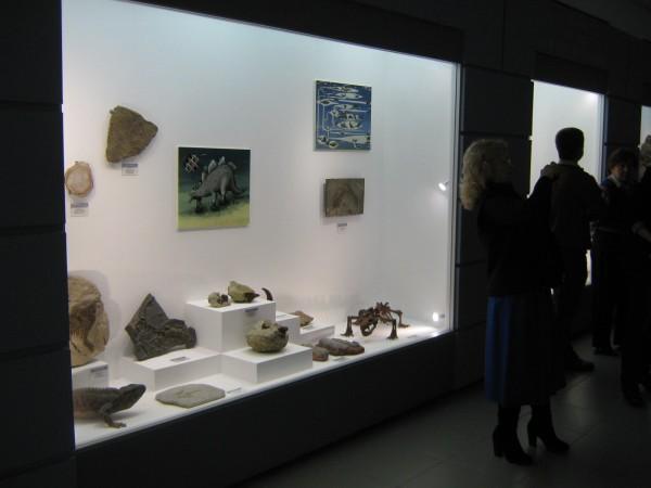 Палеонтологическая выставка в Музее природы © Алёна Груя