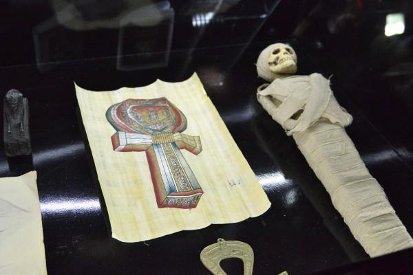 Маленькая мумия и папирус – экспонаты музея © Алёна Груя