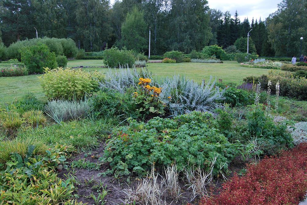 ботанический сад фото новосибирск