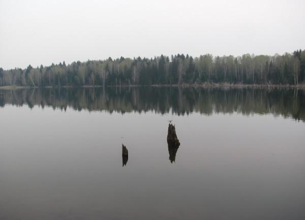 Тихая гладь воды. © Юлия Полякова